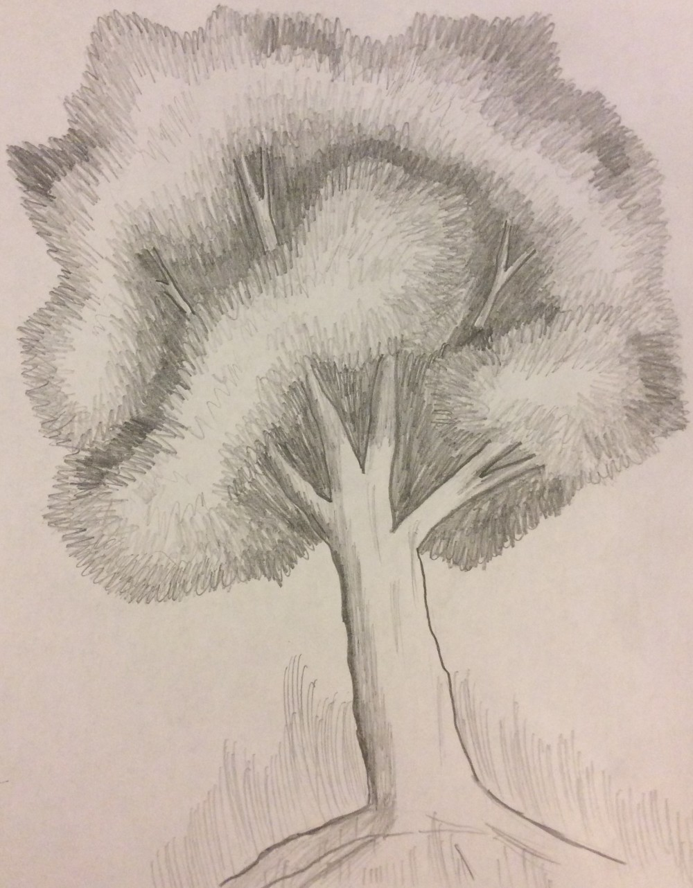 Drawing No. 21 – Tree Attempt 2