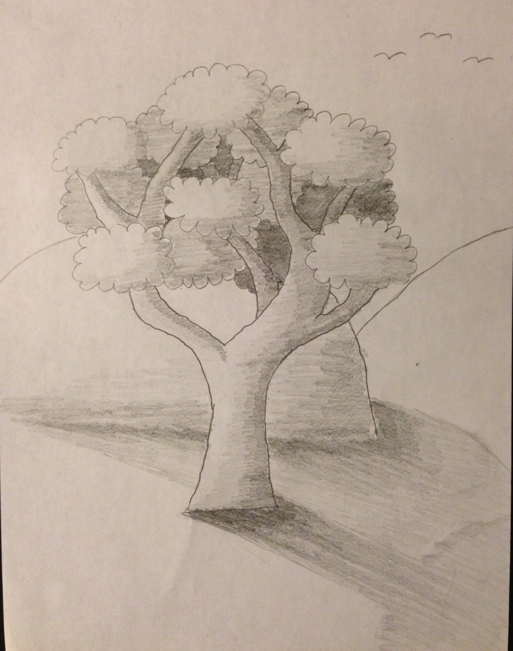 Drawing No. 10 - Tree, Hill and Shade