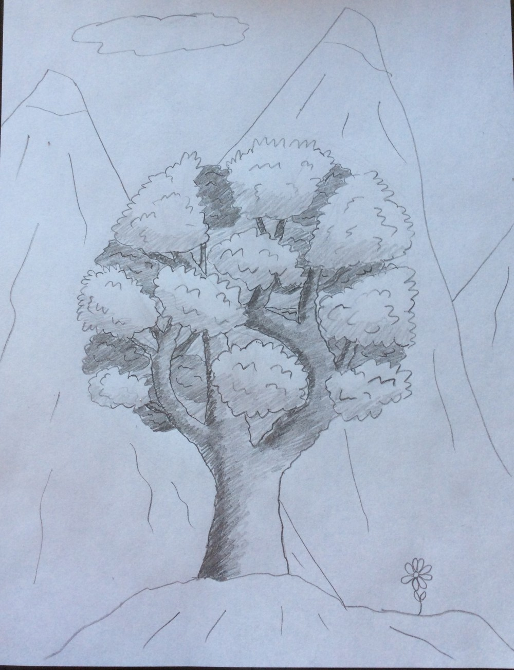 Drawing No. 6 – A Round Tree