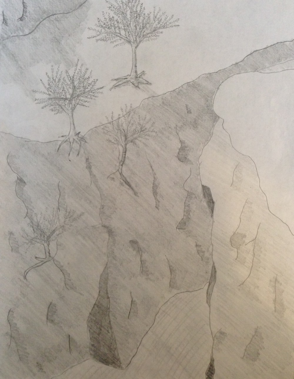 Drawing No. 17 – Trees by the Cliff